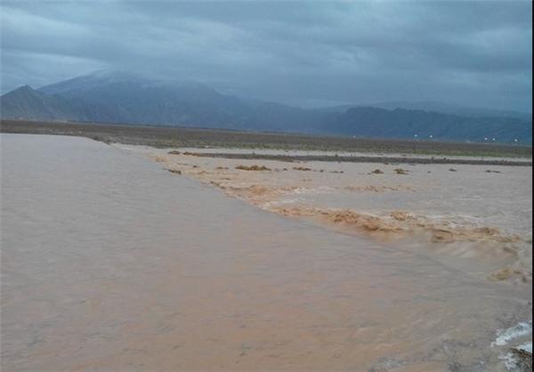 بارندگی ها بیش از۸۵ میلیارد ریال به بخش کشاورزی شهرستان ایذه خسارت وارد کرد