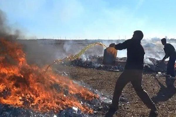آتش جهل بر جان «یارمهربان»/ از مخربترین جنایت داعش چه میدانیم؟