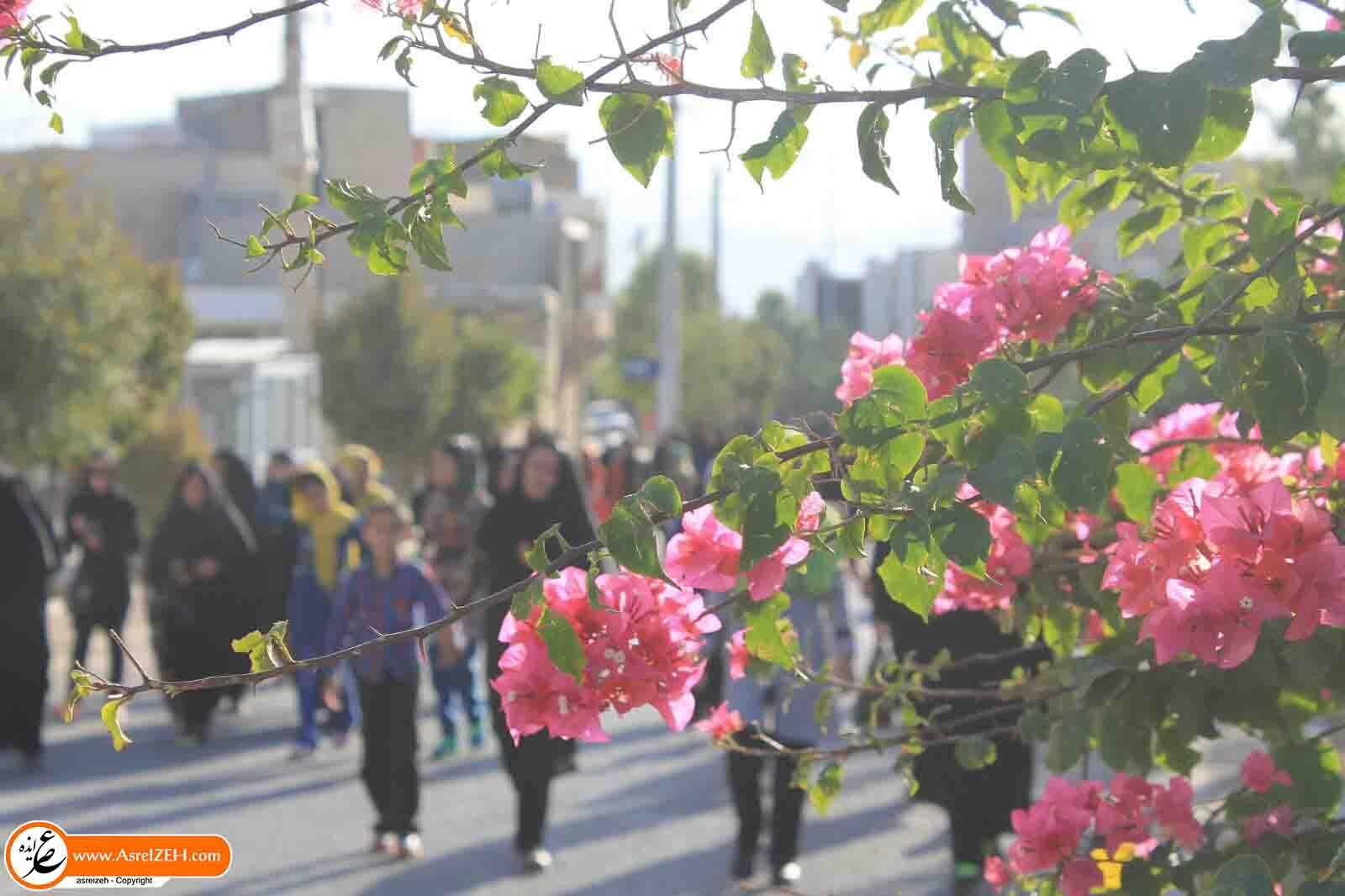 همایش پیاده روی خانوادگی بهمناسبت هفته دفاع مقدس در ایذه برگزار شد + تصاویر