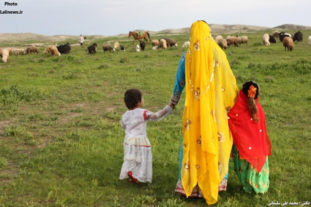 زندگی های گرم در سرزمین سبز/طبیعت رنگارنگ لالی و بختیاری های با صفای آن+عکس