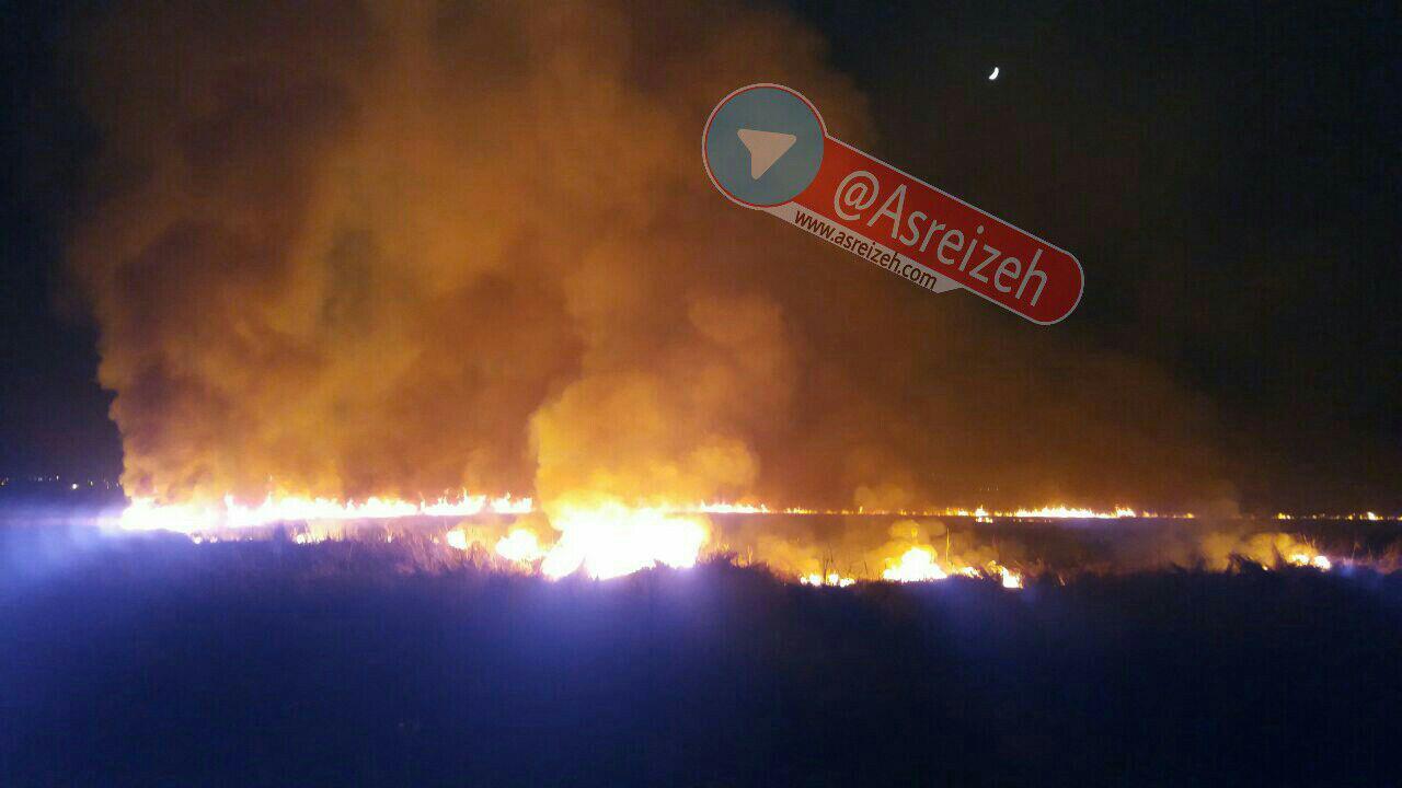 تمامی آتش سوزیهای تالاب میانگران ایذه عمدی است/ هنوز با عاملان حوادث قبلی برخورد نشده است
