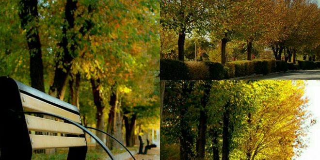 عکس/ پاییز ایذه از نگاهی متفاوت