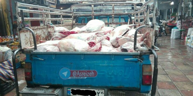 شهردار ایذه: پخش گوشت قرمز در ایذه به پیمانکار داده شد/ حملهای غیربهداشتی از سوی قصابها صورت میگیرد