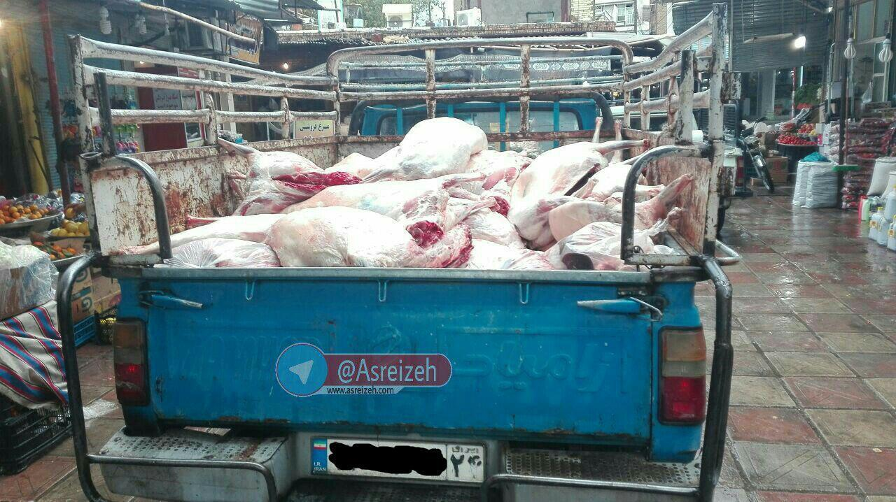از حمل غیربهداشتی گوشت در ایذه تا پاسخ رئیس دامپزشکی