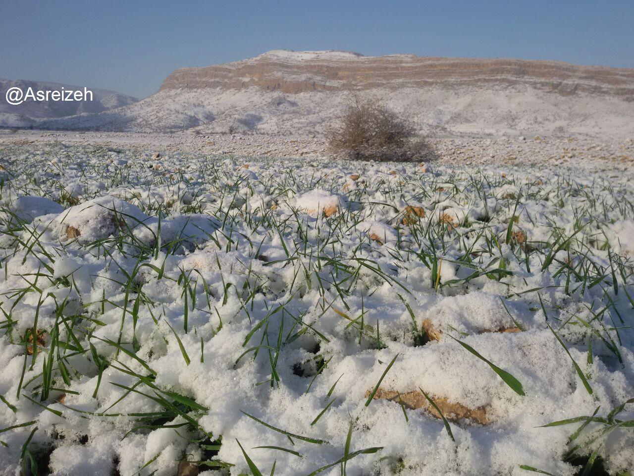گزارش تصویری/ بارش برف در شهرستان ایذه