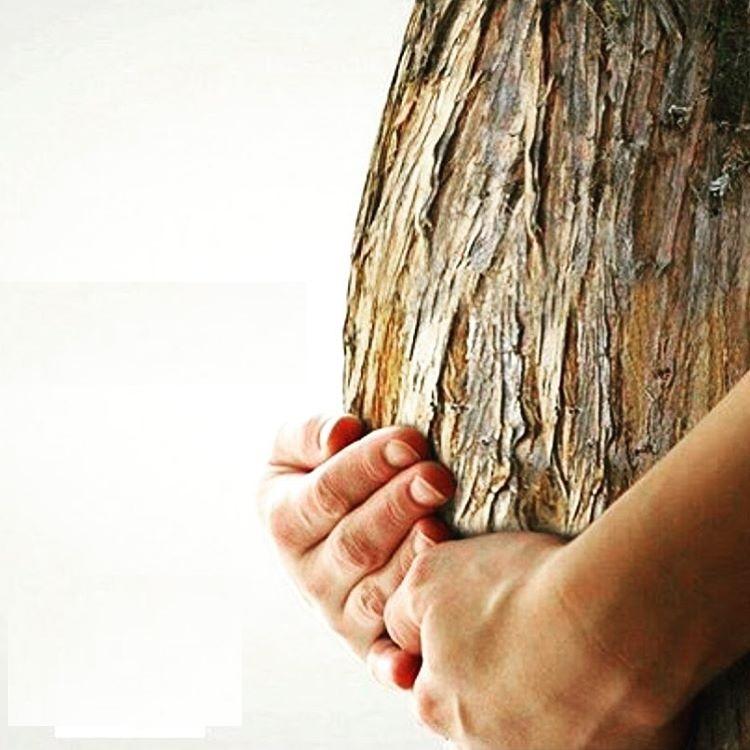 دست مادر را اگر میشکنید گاهی، قلبش را نسوزانید هرگز
