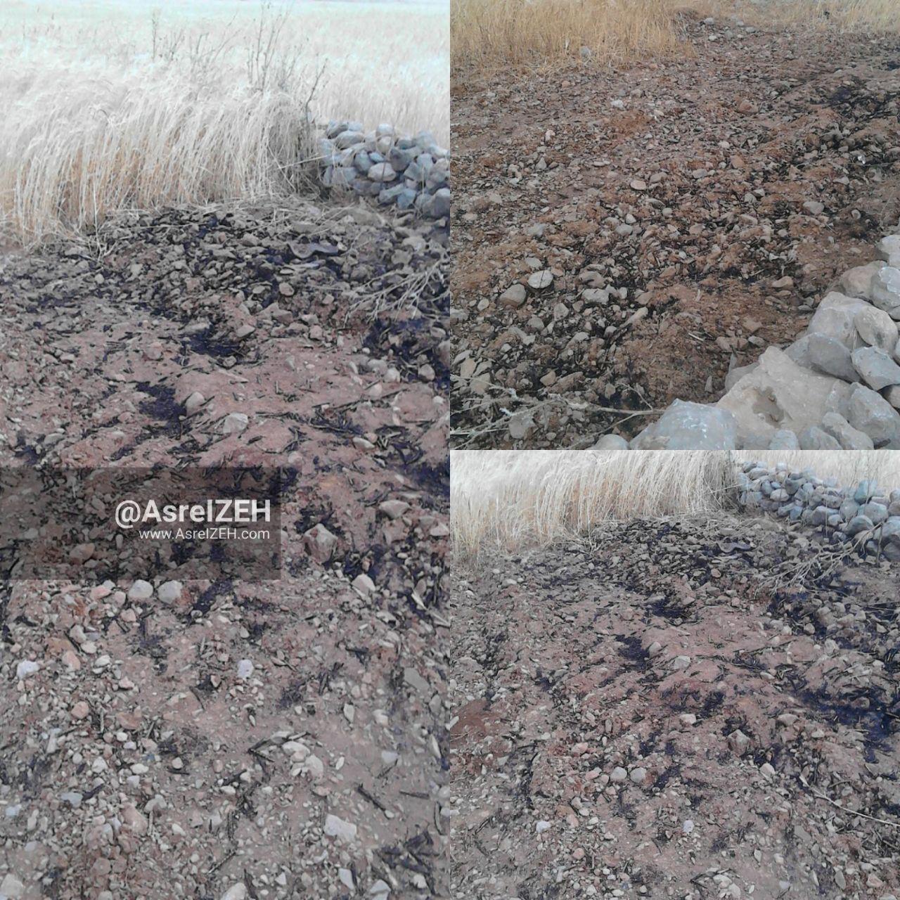 صاعقه بخشی از مزارع کشاورزی ایذه را به آتش کشاند + عکس