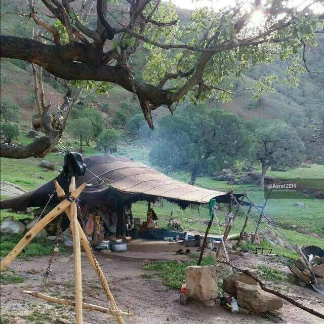 عکس/ زندگی ناب عشایری در دامنههای زاگرس
