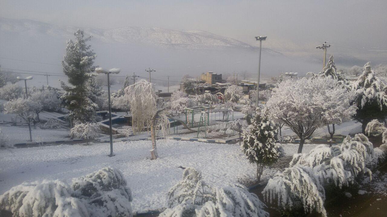 تصاویر زیبا بارش برف در دهدز